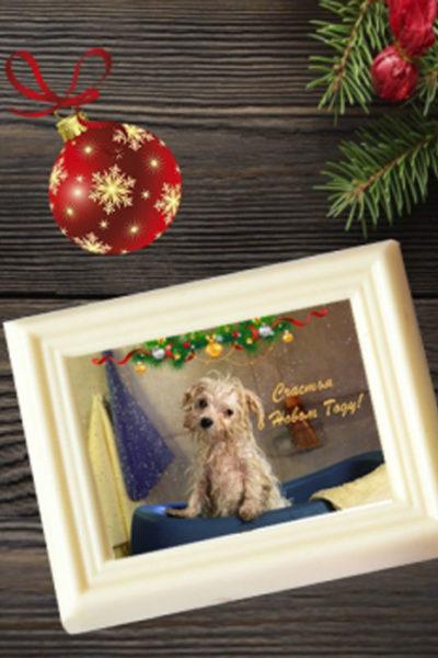 Шоколадная открытка «С Новым Годом!» 80мм х 100мм